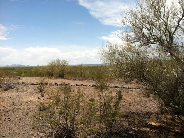 7730 Atkinson S., Tucson, AZ 85735 Photo 14