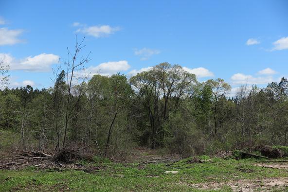 122 +/- Acres County Rd. 176, Five Points, AL 36855 Photo 14