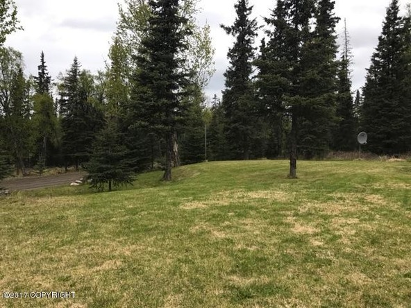 46144 Fireweed Pl., Kenai, AK 99611 Photo 4