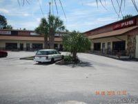 Home for sale: 5453 S. Oakridge Dr., Homosassa, FL 34448