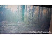 Home for sale: 3581 Spurlock Rd., Alapaha, GA 31622