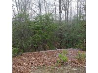 Home for sale: 999 Summerhill Dr., Cedar Mountain, NC 28718