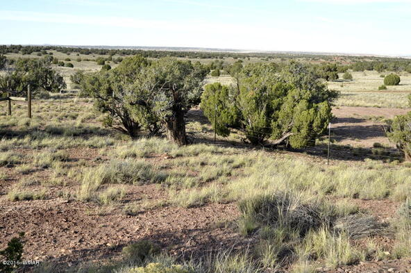 129 N. County Rd. 9190, Concho, AZ 85924 Photo 32