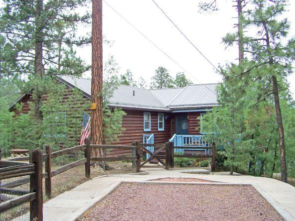 53 County Rd. 2067, Alpine, AZ 85920 Photo 1