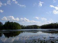 Home for sale: Sawyer Lake Lot, White Lake, WI 54491