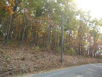 Home for sale: 00 County Rd. 275, Niota, TN 37826