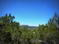 Home for sale: 1680 E. Sagebrush Rd., Williams, AZ 86046