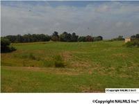 Home for sale: 50 Mount Rd., Scottsboro, AL 35768