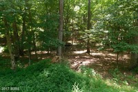 Home for sale: Headsville Rd., Keyser, WV 26726