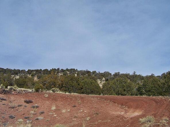 1843 E. Sagebrush Rd., Williams, AZ 86046 Photo 6