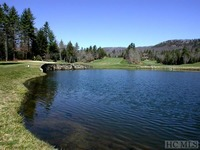 Home for sale: 8l-#39 Emerald Ridge Rd., Sapphire, NC 28774