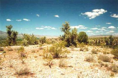 2450 S. Tissaw Rd., Cornville, AZ 86325 Photo 6