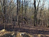 Home for sale: Lot 15 Clark Rd., Snow Camp, NC 27349
