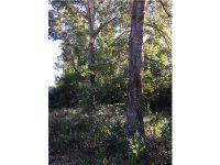 Home for sale: 40201 Overlook Dr., Eustis, FL 32736