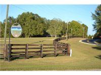 Home for sale: 0000 Chesson Hill Ct., Fitzpatrick, AL 36029