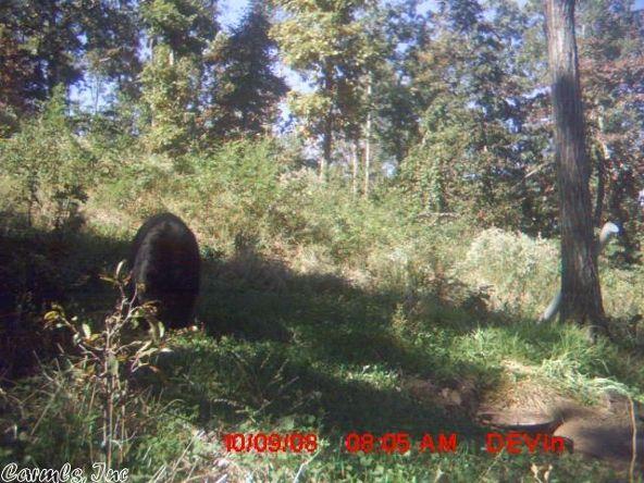 1127 Nature Dr., Saint Joe, AR 72675 Photo 32