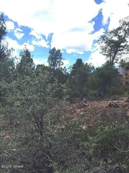 800 E. Pine Oaks Dr., Show Low, AZ 85901 Photo 8