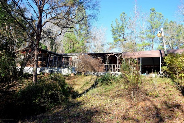 1052 County Rd. 4005, Arley, AL 35541 Photo 1