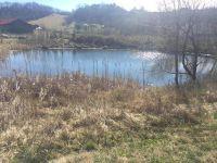 Home for sale: 0 Bending Oak Dr., Catawba, VA 24070