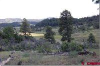 Home for sale: 673 Spring Creek Cir., Pagosa Springs, CO 81128