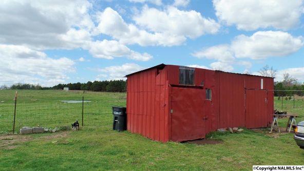 547 County Rd. 550, Grove Oak, AL 35975 Photo 15