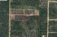 Home for sale: 5.7 Acres Watson Rd., Mossy Head, FL 32434