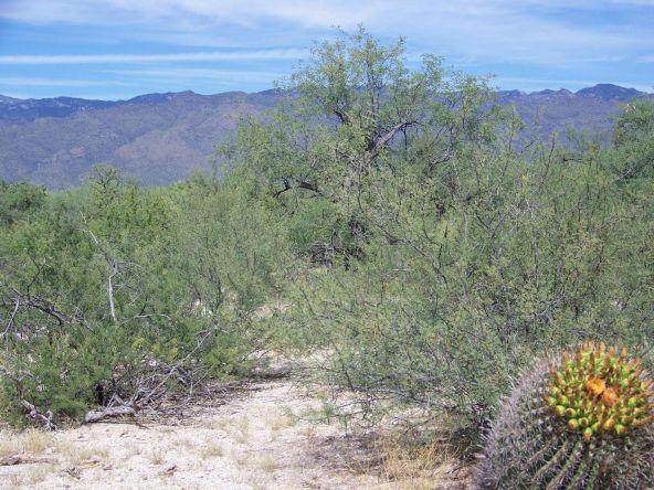 1326 N. Tanque Verde Loop, Tucson, AZ 85749 Photo 21