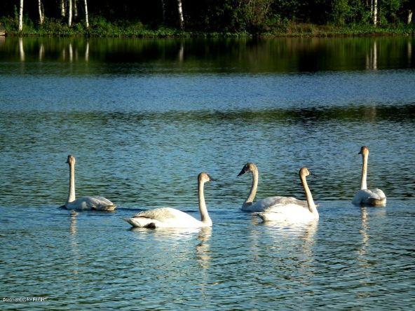 13752 W. Airigin Dr., Big Lake, AK 99652 Photo 4