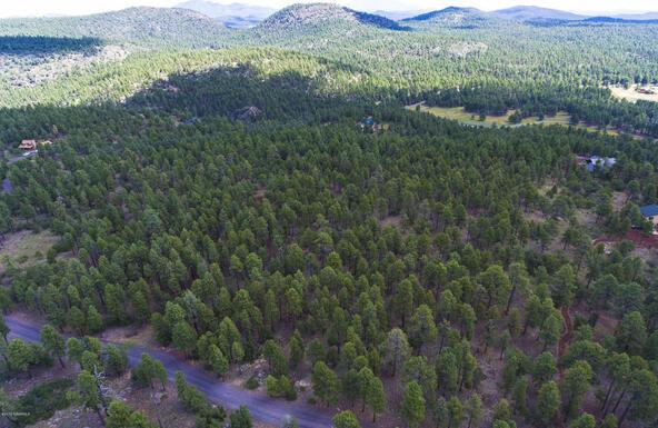 1729 S. Pine Ridge Dr., Williams, AZ 86046 Photo 9