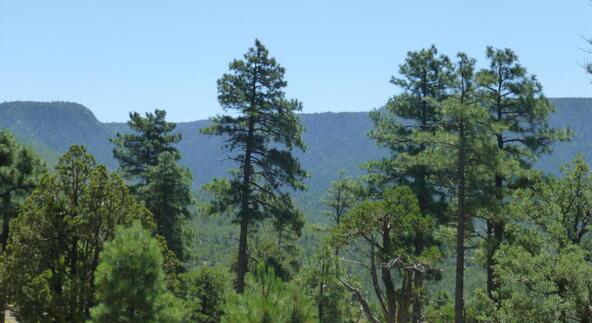 220 W. Zane Grey Cir., Christopher Creek, AZ 85541 Photo 28