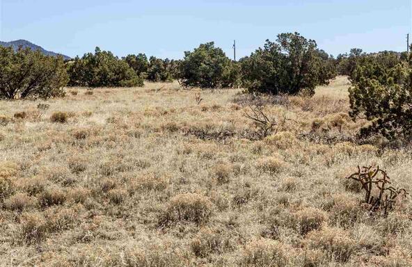 Rabbit Rd., Santa Fe, NM 87508 Photo 10