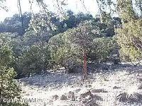 Home for sale: End Of Cr 2112, Nutrioso, AZ 85932