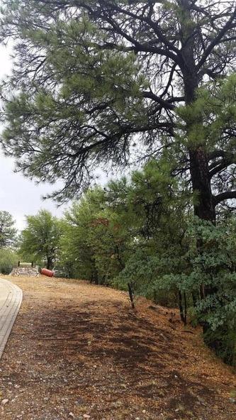 2300 W. Loma Vista Dr., Prescott, AZ 86305 Photo 6