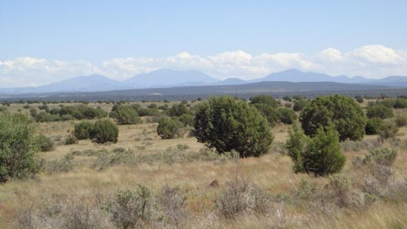 645 Westwood Ranch Lot 645, Seligman, AZ 86337 Photo 15