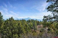 Home for sale: 2169 Meadows Dr., Pagosa Springs, CO 81147