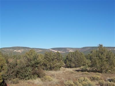 1357 W. Pinto Dr., Ash Fork, AZ 86320 Photo 4