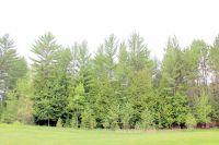 Home for sale: 6141 Link Blvd., Indian River, MI 49749