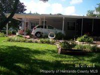 Home for sale: 7357 Mina Avenue, Brooksville, FL 34613
