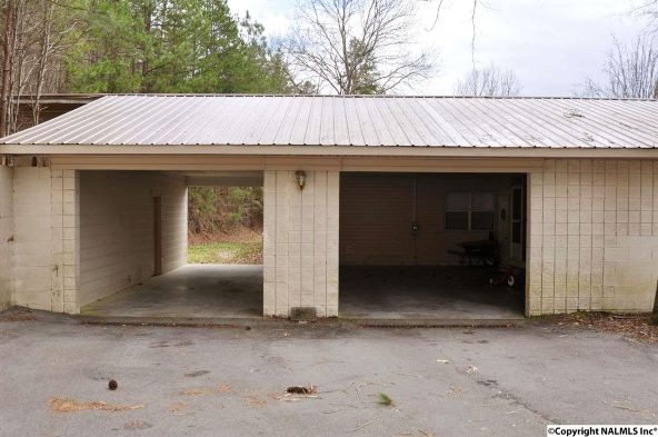 195 County Rd. 728, Cedar Bluff, AL 35959 Photo 34