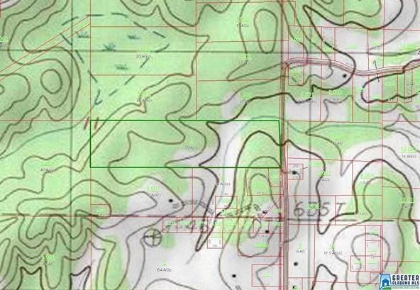705 Draper Rd., Talladega, AL 35160 Photo 3
