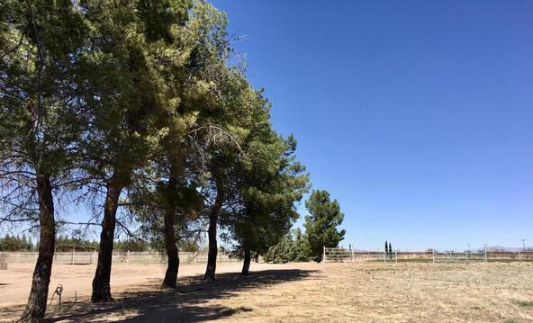 4075 W. Webb, Elfrida, AZ 85610 Photo 47