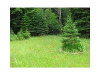 Home for sale: 66-7 Deer Meadow Rd., Rangeley, ME 04970