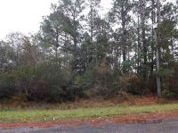 Home for sale: 2132 Copelare Dr., Milton, FL 32570