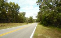 Home for sale: Tbd Wilson Springs Rd., Fort White, FL 32038