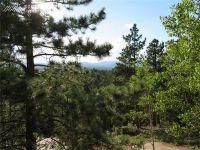 Home for sale: 2369 N. Mountain Estates Rd., Florissant, CO 80816