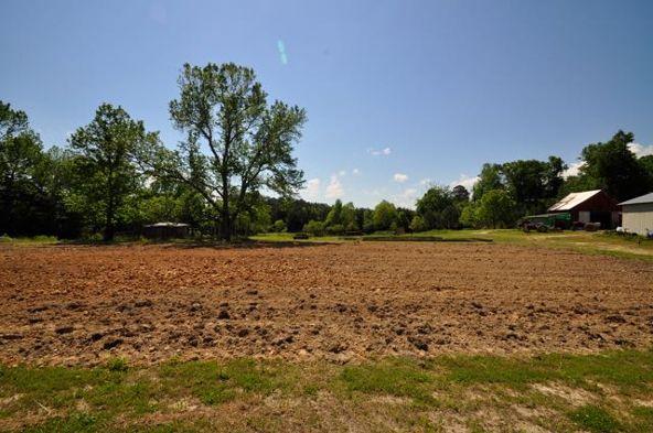 445 County Rd. 1301, Cullman, AL 35058 Photo 15