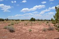 Home for sale: Tbd N. Frosty Ln. (9075) Lane, Concho, AZ 85924