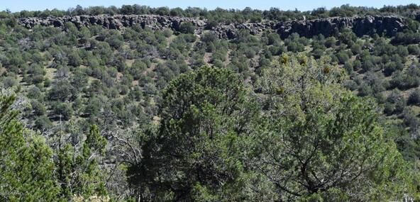 264 Sierra Verde Ranch, Seligman, AZ 86337 Photo 23
