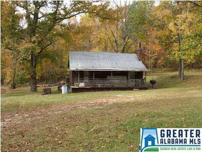 2481 Guntertown Rd., Talladega, AL 35160 Photo 4
