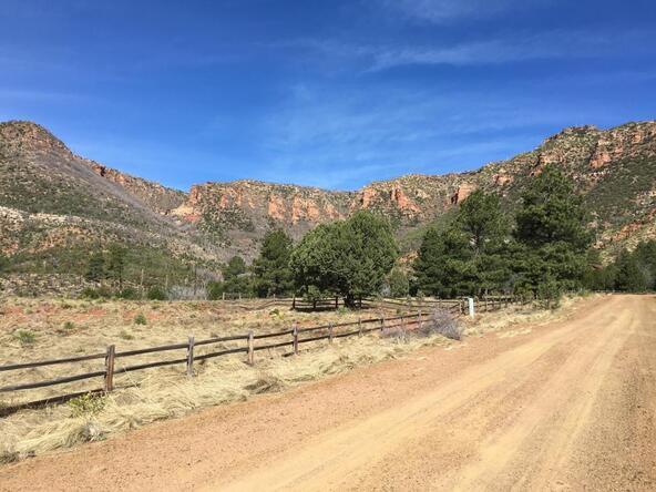 220 W. Zane Grey Cir., Christopher Creek, AZ 85541 Photo 41